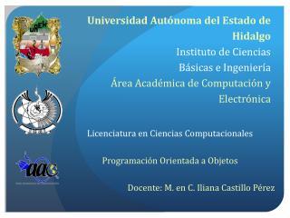Licenciatura en Ciencias Computacionales Programación Orientada a Objetos