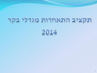 תקציב  התאחדות מגדלי בקר  2014