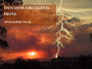 DIOS VIENE A RECOGER EL FRUTO APOCALIPSIS 14:14-