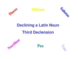 Declining a Latin Noun Third Declension