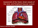 Assessment of the Heart, Great vessels of the neck, and Peripheral Vascular system