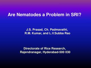 Are Nematodes a Problem in SRI