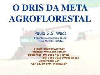 O DRIS DA META AGROFLORESTAL
