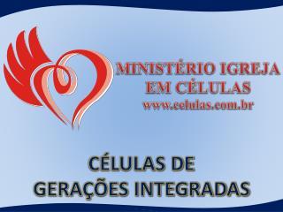 C�LULAS DE GERA��ES INTEGRADAS
