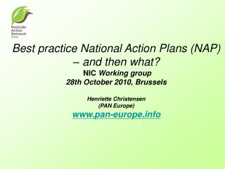 Best practice National Action Plans (NAP) – and then what?  NIC  Working group