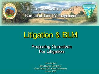 Litigation & BLM
