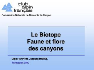 Le Biotope Faune et flore des canyons
