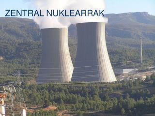 ZENTRAL NUKLEARRAK