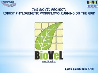 The  Biovel  Project: Robust phylogenetic workflows running  on the GRID