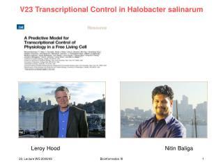 V23 Transcriptional Control in Halobacter salinarum