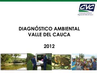DIAGNÓSTICO AMBIENTAL   VALLE DEL CAUCA 2012
