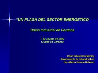 """""""UN FLASH DEL SECTOR ENERGETICO Unión Industrial de Córdoba 7 de agosto de 2006 Ciudad de Córdoba"""
