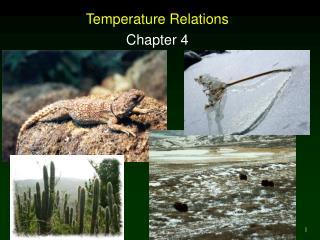 Temperature Relations