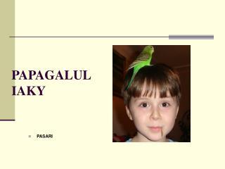 PAPAGALUL IAKY