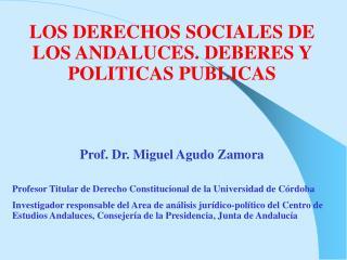 LOS DERECHOS SOCIALES DE LOS ANDALUCES. DEBERES Y POLITICAS PUBLICAS Prof. Dr. Miguel Agudo Zamora