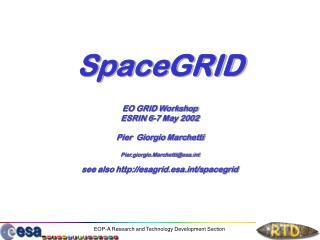 SpaceGRID EO GRID Workshop ESRIN 6-7 May 2002 Pier  Giorgio Marchetti