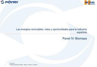 Las energías renovables: retos y oportunidades para la industria española