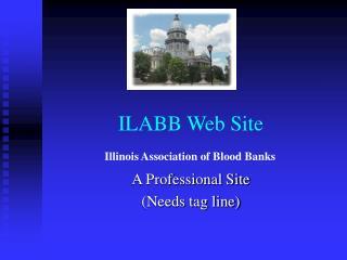 ILABB Web Site