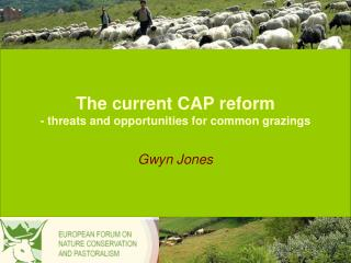 The current CAP reform - threats and opportunities for common grazings