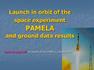 Launch in orbit of the  space experiment PAMELA and ground data results