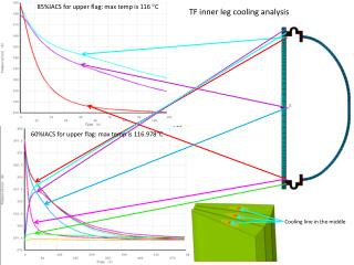 TF inner leg cooling analysis