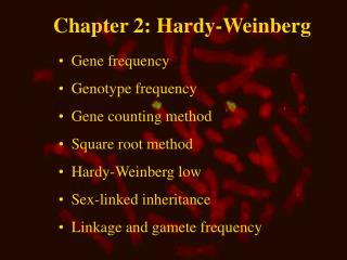 Chapter 2: Hardy-Weinberg