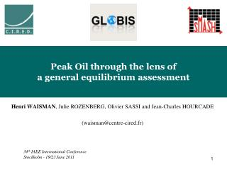 Peak Oil through the lens of  a general equilibrium assessment
