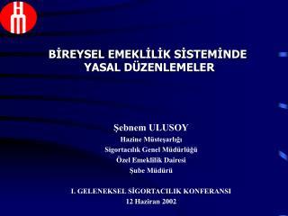 Şebnem ULUSOY Hazine Müsteşarlığı Sigortacılık Genel Müdürlüğü Özel Emeklilik Dairesi Şube Müdürü