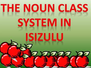 THE NOUN CLASS SYSTEM IN  ISIZULU