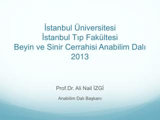 İstanbul Üniversitesi İstanbul Tıp Fakültesi Beyin ve Sinir Cerrahisi Anabilim Dalı 2013