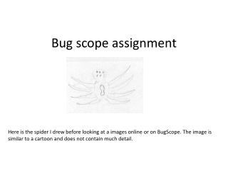 Bug scope assignment