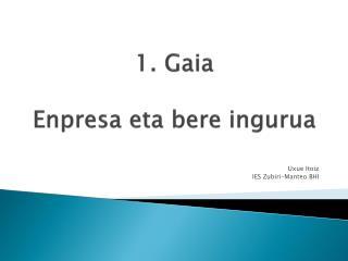 1.  Gaia Enpresa  eta  bere ingurua