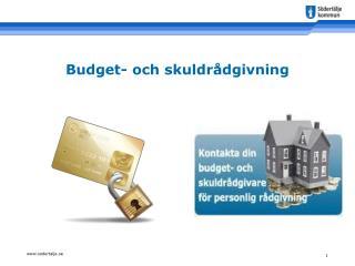 Budget- och skuldrådgivning
