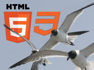 A Brief History of Time HTML5 CSS3 Tips