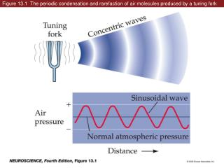 Figure 13.1  The periodic condensation and rarefaction of air molecules produced by a tuning fork