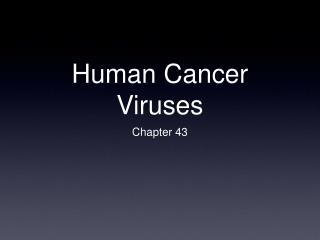 Human Cancer Viruses
