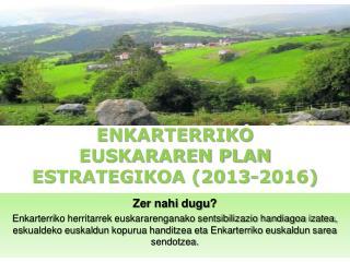 ENKARTERRIKO EUSKARAREN PLAN ESTRATEGIKOA (2013-2016)