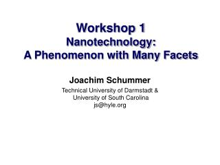 Workshop 1  Nanotechnology:  A Phenomenon with Many Facets