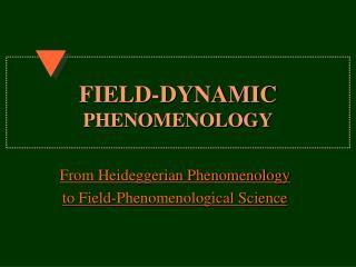 FIELD-DYNAMIC PHENOMENOLOGY