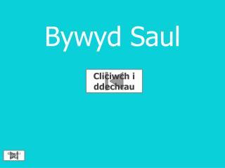 Bywyd  Saul