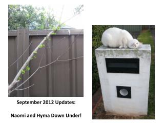 September 2012 Updates:   Naomi and Hyma Down Under!