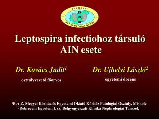 Leptospira i nfectiohoz társuló  AIN esete