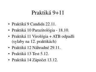 Praktiká 9+11