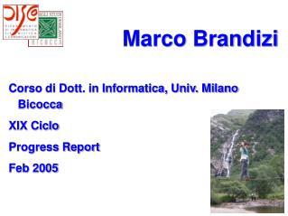 Marco Brandizi      Corso di Dott. in Informatica, Univ. Milano Bicocca XIX Ciclo Progress Report