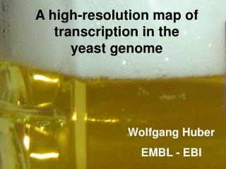 A high-resolution map of transcription in the  yeast genome