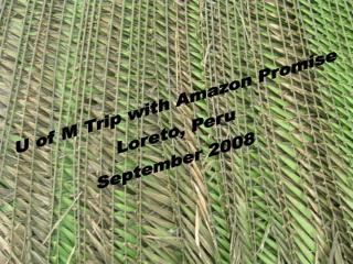 U of M Trip with Amazon Promise Loreto, Peru September 2008