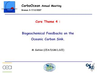 Core Theme 4 : Biogeochemical Feedbacks on the Oceanic Carbon Sink. M. Gehlen (CEA/DSM/LSCE)