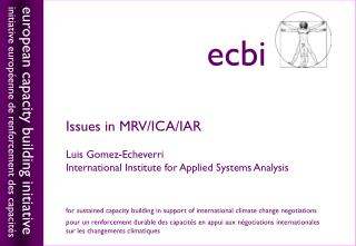 Issues in MRV/ICA/IAR Luis Gomez-Echeverri International Institute for Applied Systems Analysis