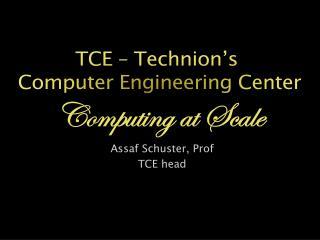 Assaf Schuster, Prof TCE head
