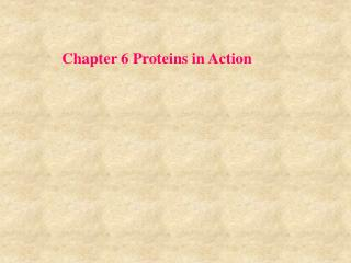 Chapter 6 Proteins in Action